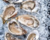 Live large fresh unshucked Oysters